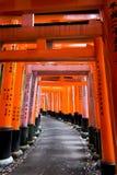 Tori Gates bij Heiligdom in Japan Stock Afbeelding