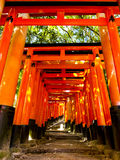 Tori gates at Fushimi Inari shrine Stock Image