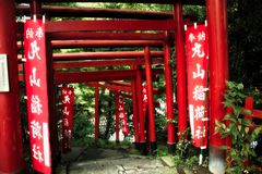Tori Gates. Looking through a series of tori gates in Japan Royalty Free Stock Photos