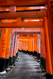 Tori Gates at Shrine in Japan. Stock Image