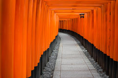 Tori on Inari shrine Royalty Free Stock Images