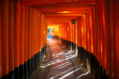 Tori of Kyoto Fushimi Shrine Royalty Free Stock Photos
