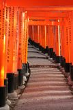 Tori Path in Fushimi Inari Royalty Free Stock Images
