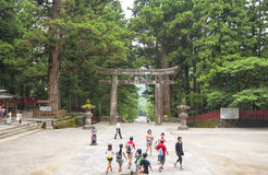 Tori in Toshogu temple at Nikko, Japan Stock Photo