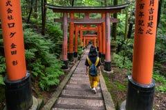 torii门包括的供徒步旅行的小道在Fushimi Inari祀奉 库存照片