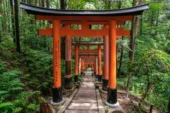 torii门包括的供徒步旅行的小道 免版税图库摄影