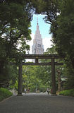 Torii门在东京和摩天大楼 库存照片