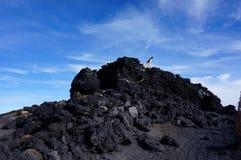 Torii门的后部在Mt山顶的  富士 免版税库存照片