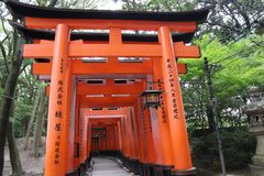 torii πυλών Η λάρνακα Fushimi Inari Taisha Inari Fushimi Κιότο Ιαπωνία Στοκ εικόνες με δικαίωμα ελεύθερης χρήσης