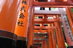 torii πυλών Η λάρνακα Fushimi Inari Taisha Inari Fushimi Κιότο Ιαπωνία Στοκ Εικόνες