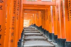 torii красного цвета стробирует дорожку на святыне taisha inari fushimi в Ky Стоковая Фотография RF