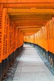 torii красного цвета стробирует дорожку на святыне taisha inari fushimi в Ky Стоковое Фото