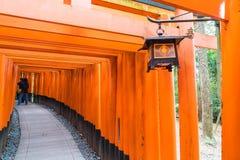 torii красного цвета стробирует дорожку на святыне taisha inari fushimi в Ky Стоковые Изображения