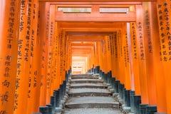 torii красного цвета стробирует дорожку на святыне taisha inari fushimi в Ky Стоковое Изображение RF