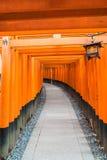 torii красного цвета стробирует дорожку на святыне taisha inari fushimi в Ky Стоковая Фотография