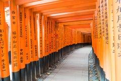 torii красного цвета стробирует дорожку на святыне taisha inari fushimi в Ky Стоковые Фото