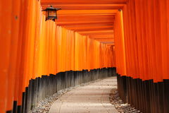 Torii на святыне Fushimi Inari с latern Стоковая Фотография RF