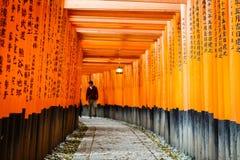 torii святыни японии kyoto inari стробов fushimi Стоковые Изображения