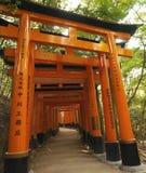Torii стробирует - Fushimi Inari-Taisha - япония Стоковое Изображение RF