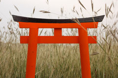 Torii anaranjado del japonés se coloca en los gras del prado Imagen de archivo
