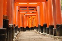 Torii au tombeau de Fushimi Inari avec des caractères Image libre de droits