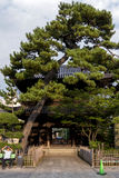Torii av Shintotemplet Royaltyfria Foton