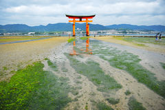 Torii brama Itsukushima Świątynia przy Miyajima zdjęcia royalty free
