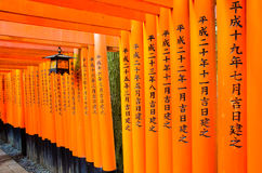 Torii chez Fushimi Inari Photo stock
