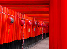 Torii de Inari Taisha Imagem de Stock Royalty Free