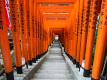Torii en la capilla de Hie Jinja, Tokio, Japón fotos de archivo libres de regalías