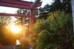 Torii in the evening. The Torii of a private garden Stock Image