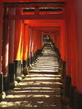 Torii at Fushimi Inari Shrine Stock Image