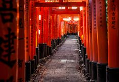 Torii at Fushimi Inari-taisha at Autumn sunset with sunlight filtering through the gates and some leaf litter on the sides royalty free stock photo