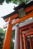 Torii at Fushimi Inari Taisha Temple Royalty Free Stock Photography