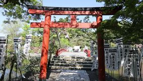 Torii Gate at Benzaiten Shrine stock footage