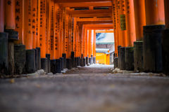 Torii gate in Fushimi Inari Shrine, Kyoto, Japan - shallow depth Stock Photography