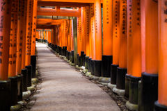 Torii gate in Fushimi Inari Shrine, Kyoto, Japan - shallow depth Stock Photos