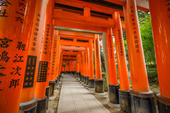 Torii gate at Fushimi Inari shrine in Kyoto Stock Photos