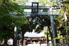 Torii gate and guardian dogs of Shinto shrine. In Japan royalty free stock photos