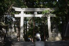 Torii gate and guardian dogs of Shinto shrine. In Japan stock photo