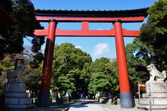 Torii gate of Japanese shrine stock image