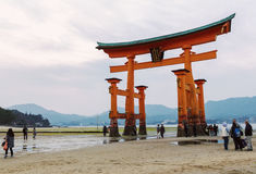 Torii gate at low tide in Japan. Miyajima, Japan - March 29, 2012: People enjoy the huge floating torii gate of the Itsukushima Shrine at low tide in the evening Royalty Free Stock Image