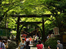 Torii gate of Nonomiya Shrine, Arashiyama Kyoto Japan. Nonomiya shrine's Torii gate and Chinowa ( reed circle ), Arashiyama Kyoto Japan on the day of early Stock Photos