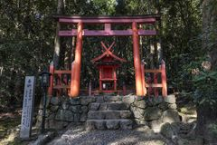 Torii gate and shinto shrine in the the Kasugayama Primeval Forest, registered as a UNESCO World Heritage Site as part of the Hi Stock Photo