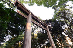 Torii Gate standing at the entrance to Meiji Jingu Shrine, Tokyo Royalty Free Stock Image