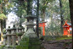 Torii Gate and Stone lanterns. On the path leading up to the Kasuga Shrine, Nara Royalty Free Stock Photos