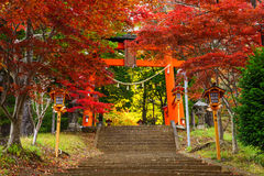 Torii gate to chureito pagoda, Fujiyoshida, Japan Stock Photo