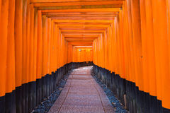 Torii Gatein Fushimi Inari Taisha Shrine in Kyoto, Royalty Free Stock Photos