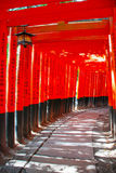 Torii gates. The Orange Torii gates at Kyoto's Fushimi Inari Shrine,Japan Stock Photography