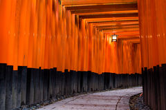 Torii Gates. Darkly lit pathway lined with Torii gates in Japan Royalty Free Stock Photo